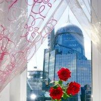 Розы на подоконнике :: YURII K