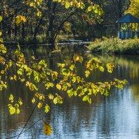 Осеннее дыхание. :: ФотоЛюбка *