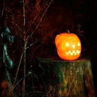 Halloween :: Svetlana AS