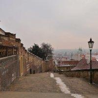 Прага :: Dorosia