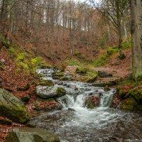 Так рождается река... :: Aleks Lubimov