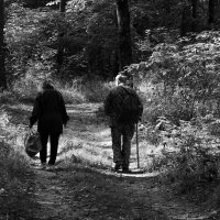 Их провожает в зиму осень... :: Валерия  Полещикова