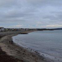 На берегу Ирландского моря. :: zoja