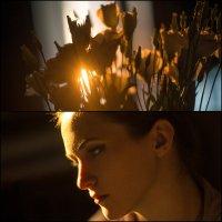 Flowers in my head :: Ivan Pavlov