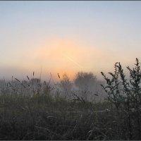 Не потеряй веру в тумане... :: Ирина Нафаня