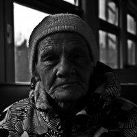 В Дороге... :: Андрей Маталин