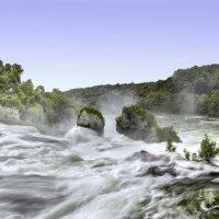 Рейнский водопад :: Александр Новиков