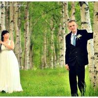 свадьба Екатерины и Сергея :: Наталья Мерзликина