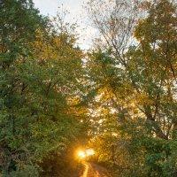 Осенний восход :: Алексей Матусевич