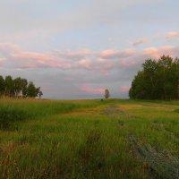 Розовый закат. :: nadyasilyuk Вознюк