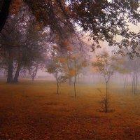 Такую бы осень нам II :: Егор Плетенец