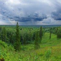 На Вологодчине дожди :: Валерий Талашов