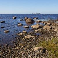 Восточный берег Балтийского моря :: Дмитрий Графов