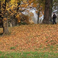пейзаж со полскамейки и велосипедистом в парке :: sv.kaschuk