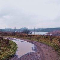 На просёлочной дороге :: Владимир Болдырев