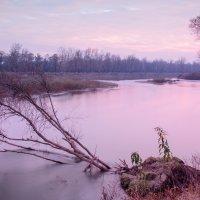 Закат на берегу реки Прут :: Сергей Бобков