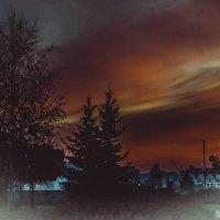 Наш Вечерний парк :: Ирина Малинина