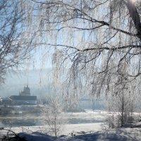 Морозное утро :: Людмила Юнченко