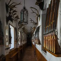 Интерьер охотничьего замка. Чехия :: Александр Лядов