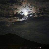 летняя ночь :: Alexander Varykhanov