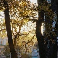 Утро у Никольского собора :: Валерия заноска