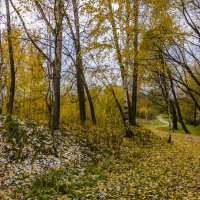 Осень :: Константин Сафронов