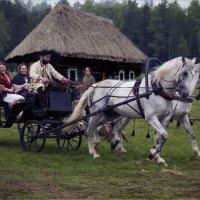 Катание на лошадях... :: Виктор Перякин