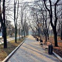 Осеннее утро ... :: Kirill