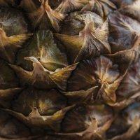 Pineapple :: Антон Бржозовский