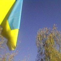 Военная осень 2014 :: Миша Любчик