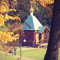 осень :: Александр ***