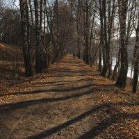 Осенняя тропа........ :: Владимир Питерский