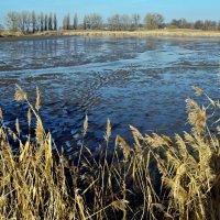 спущенное озеро :: юрий иванов