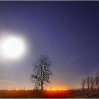 03.А ночь такая лунная! :: Владимир Холодный