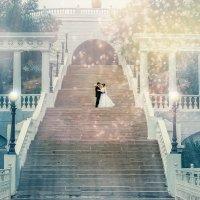 Свадебная прогулка Виктора и Юлии :: Нина Трушкова