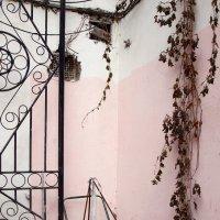 Непарадная Москва :: Елена Гаврилова lega
