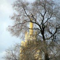 Осенние городские узоры :: Олег Лукьянов