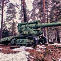 Для ребят-октябрят пушки в лагере стоят :: Светлана Игнатьева