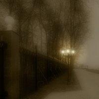 Фонарь в тумане тосковал по джазу... :: Владимир Комышев