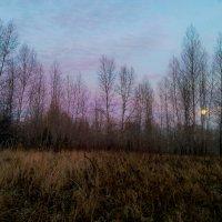 Поздняя осень.Закат :: Сергей Бажов