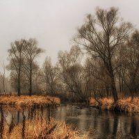 Краски осени :: Иван Анисимов