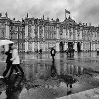Дождь на Дворцовой :: Александр Максимов