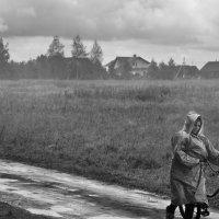 Валентина Олехнович - В дождь
