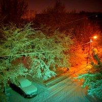 Цветастый снег :: Натали Акшинцева