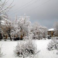 Снежный дворик :: Натали Акшинцева
