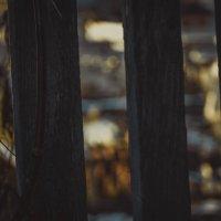 Горят огни :: Света Кондрашова