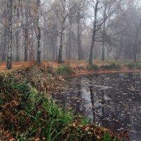Есть в графском парке старый пруд... :: BoykoOD