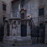 valencia, spain :: роман фарберов