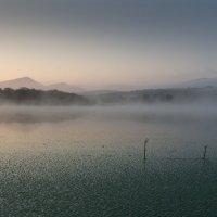 Туманное утро... :: Тамара Морозова