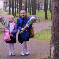 В школу :: Диана Мелина